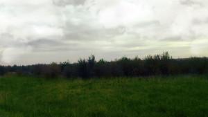 Дорожаево