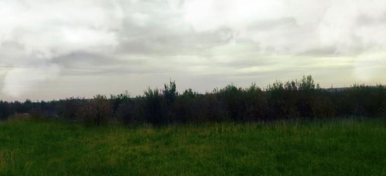 Земельный участок в Тверской области, деревня Селиваново